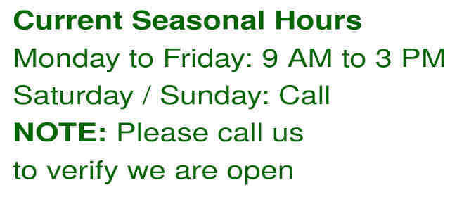 Current seasonal business hour